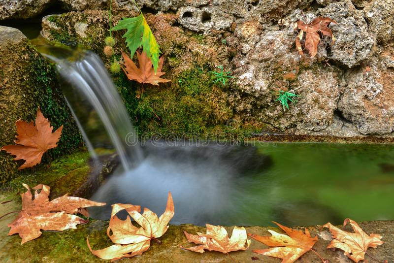 Freshness and tranquility of natural waters stock image