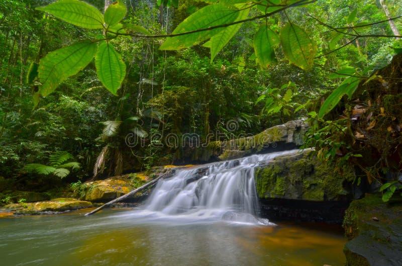 A beautiful scenery of Batu Tangga Waterfall in Pahang, Malaysia. Freshness view of water flow at Batu Tangga Waterfall in Pahang, Malaysia stock photo