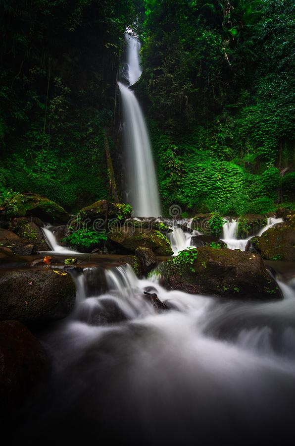The Naature of Watrefall royalty free stock image