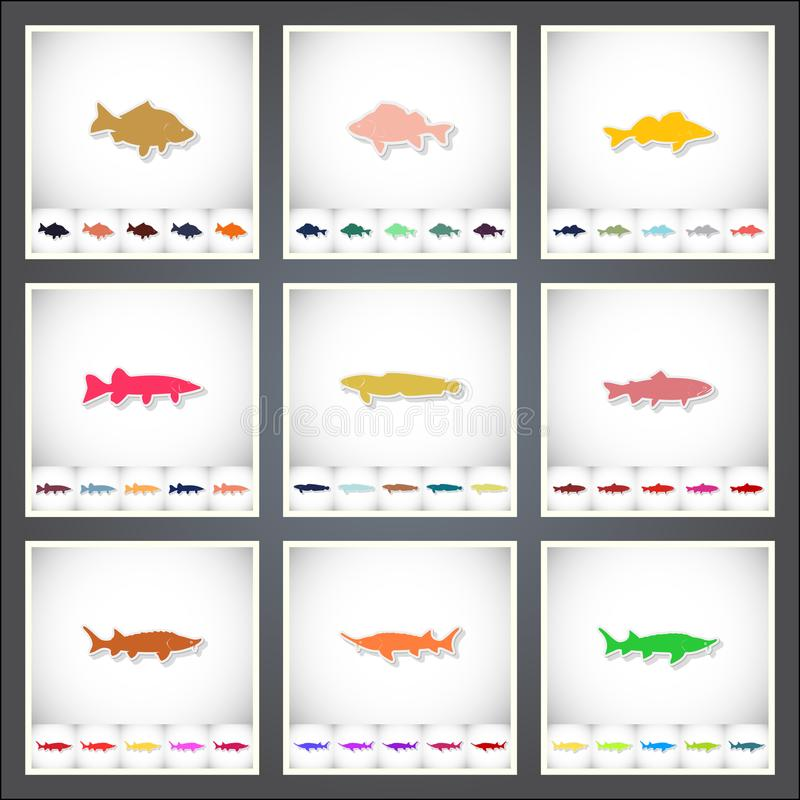 Freshwater fish. A set of flat stickers with shadow on white background. Vector illustration vector illustration