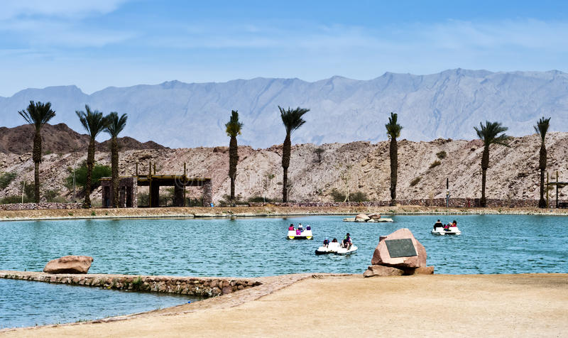 Freshwater lake in Timna park, Israel royalty free stock photography