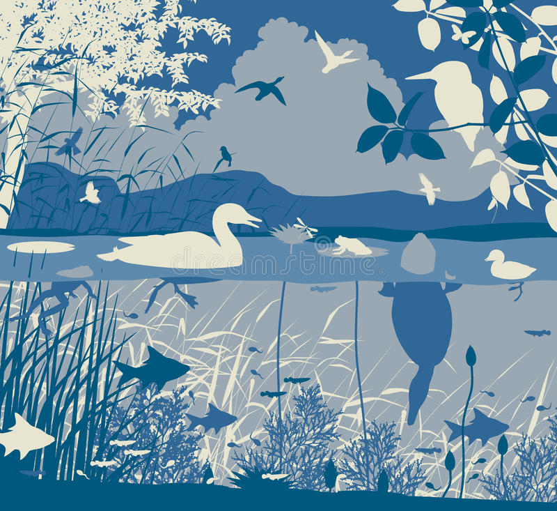 Freshwater wildlife. EPS8 editable vector illustration of diverse wildlife in a freshwater ecosystem with all figures as separate objects royalty free illustration