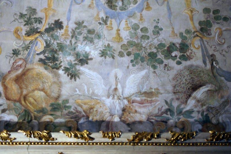 Fresque de Madama de palazzo de palais royal de l'Italie Turin avec les oiseaux exotiques le RDS photo stock