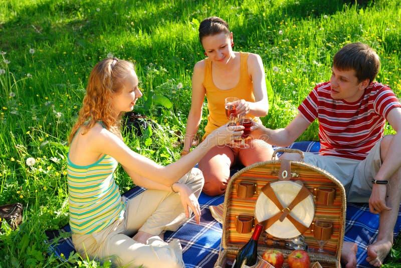 Freunde auf Picknick stockfotografie