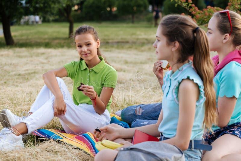 Freunde, die auf dem Gras isst gesunde Nahrung an einem Mittagessen sitzen stockfotografie