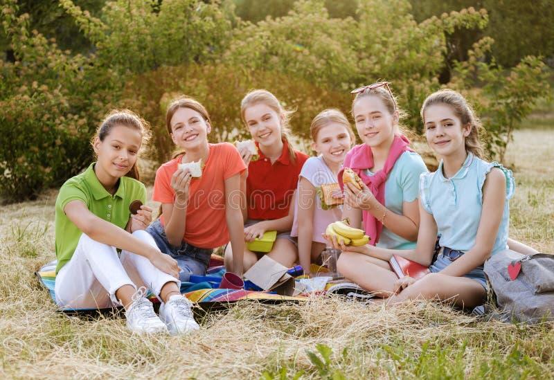 Freunde, die auf dem Gras isst gesunde Nahrung an einem Mittagessen sitzen lizenzfreie stockfotos
