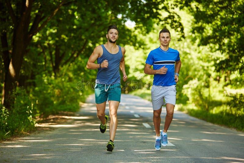 Freunde, die durch Wald laufen lizenzfreie stockfotos