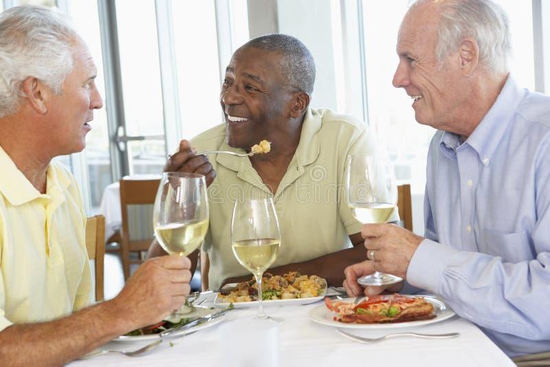 Freunde, die an einer Gaststätte zu Mittag essen lizenzfreie stockfotografie