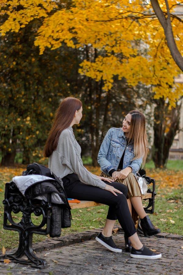 Freundinnen, die auf einer Bank im Herbstpark sprechen lizenzfreie stockbilder