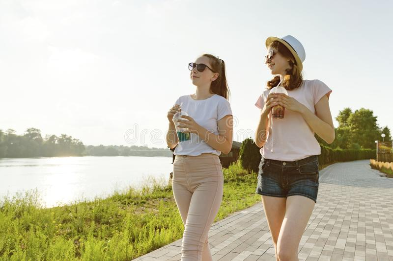 Freundinnen gehen in den Park in der Natur Mädchen gehen entlang den grünen Rasen, sprechen, haben Spaß lizenzfreies stockfoto