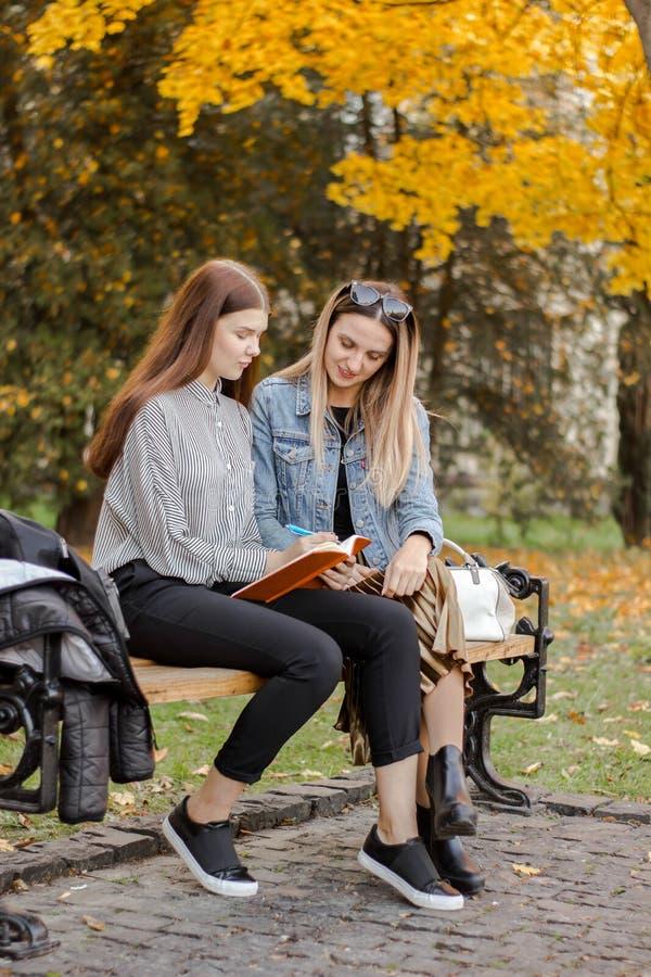 Freundinnen nehmen Kenntnisse beim Sitzen auf einer Bank im Herbstpark stockfotos