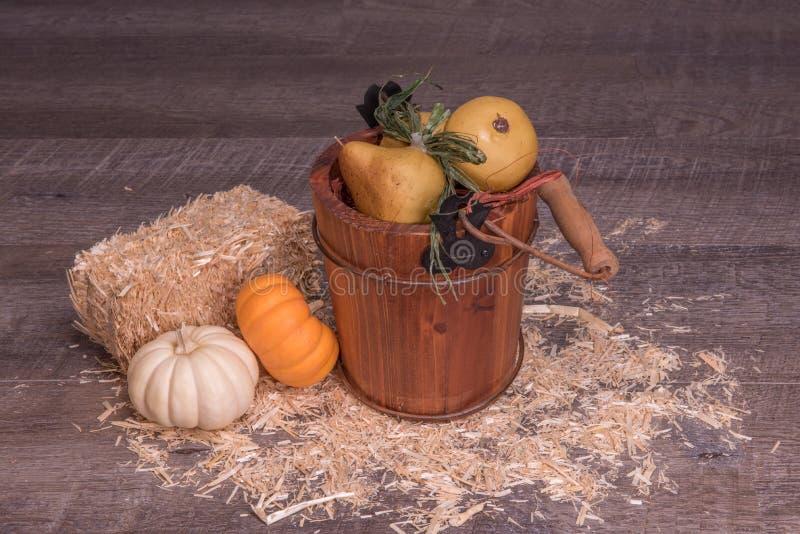 Freundlicher Fall mit einem Fruchteimer und einem netten mini weißen und orange Kürbis lizenzfreies stockfoto
