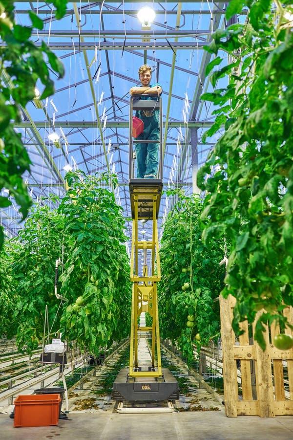 Freundlicher Landwirt, der an hydraulischer Scherenbühneplattform in g arbeitet stockbilder