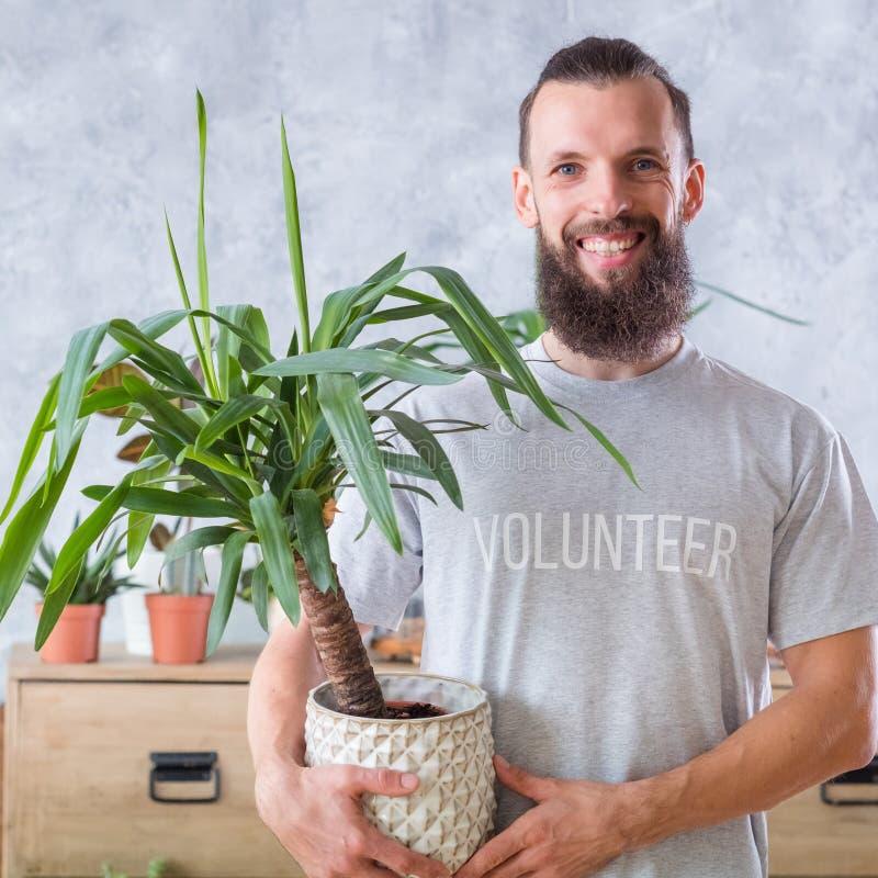 Freundlicher pflanzender freiwilliger Griff Eco Houseplant stockfotos