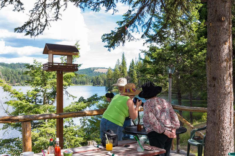 Freundschaft: Drei Damen auf Ausflug am See lizenzfreies stockbild