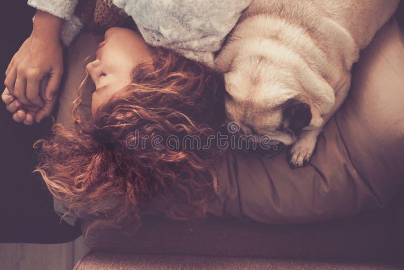 Freundschafts- und Verhältnis-Konzept mit junger Schönheit und netten dem Pughund, die zusammen morgens auf dem Bett schläft stockfoto