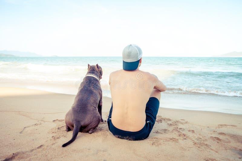 Freundschaftskonzept, -mann und -hund, die zusammen auf dem Strand bei Sonnenuntergang sitzen stockfotografie