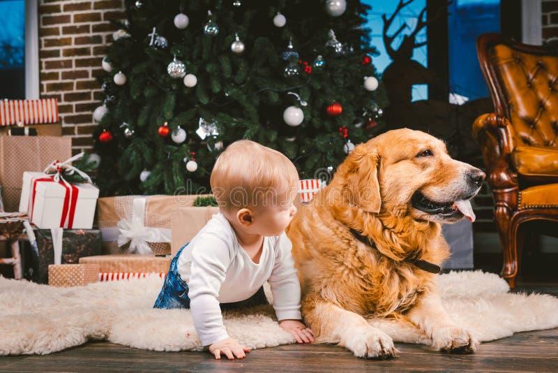 Freundschaftsmannkind und Hundehaustier Thema-Weihnachtsneues Jahr-Winterurlaube Baby auf dem Boden verzierten Baum und bester Fr lizenzfreie stockbilder