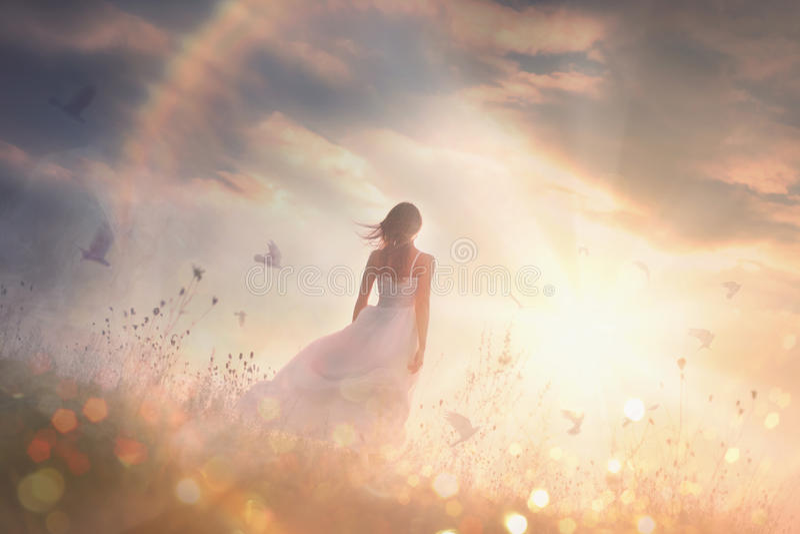 Fri flicka på gryning i ett fält arkivfoton
