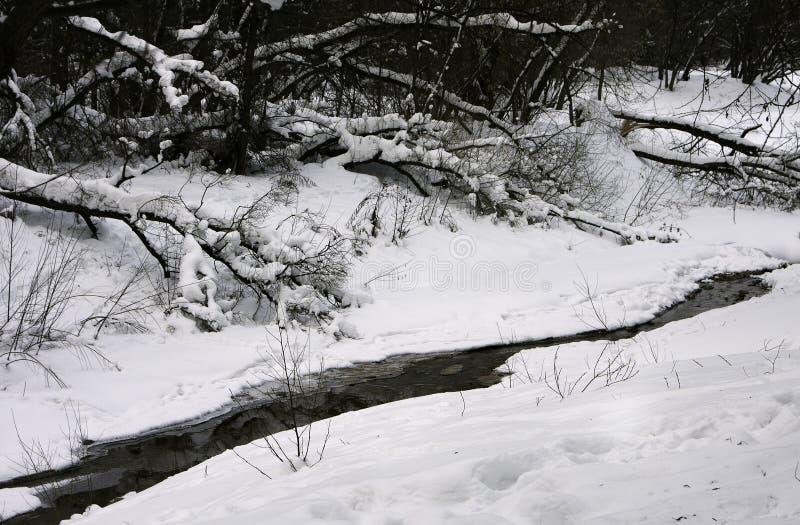 Is-fri flod i kall snöig vinter för ligganderussia för 33c januari ural vinter temperatur royaltyfria foton