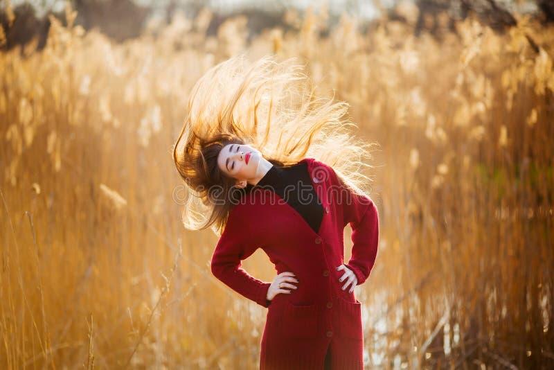 Fri lycklig ung kvinna Den härliga kvinnlign med långt sunt blåsa hår som tycker om solljus parkerar in, på solnedgången Vår arkivfoton