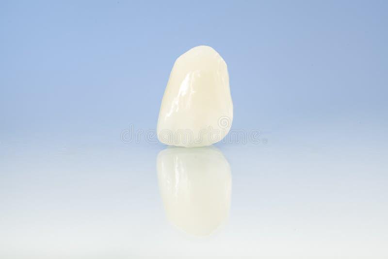 Fria keramiska tand- kronor för metall fotografering för bildbyråer