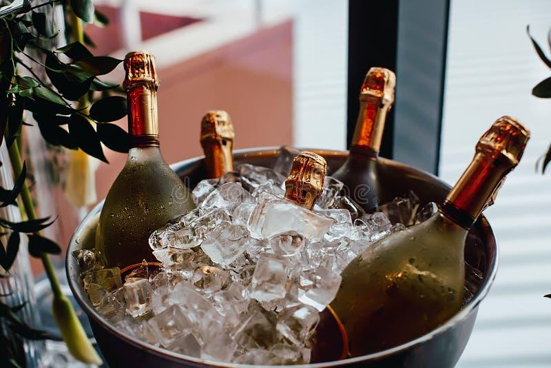 Frialdad de cinco botellas de vino en cubo de hielo foto de archivo libre de regalías