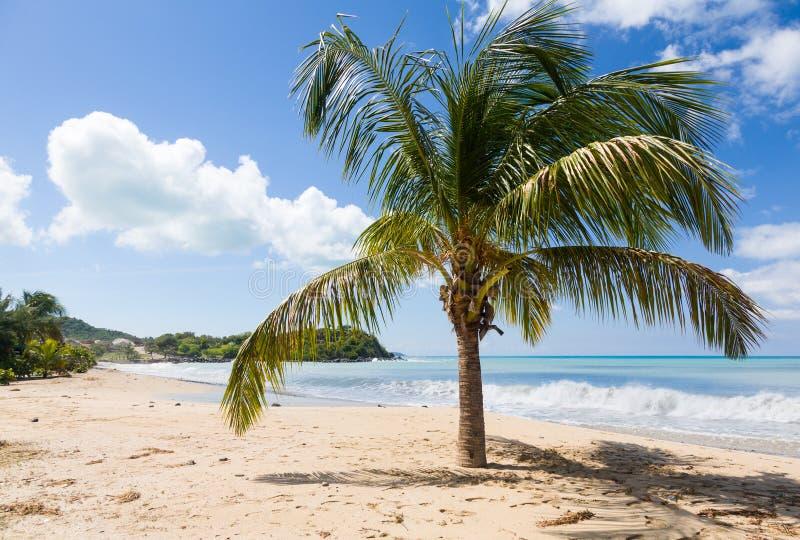 Friar κόλπος στο ST Martin στις Καραϊβικές Θάλασσες στοκ εικόνες