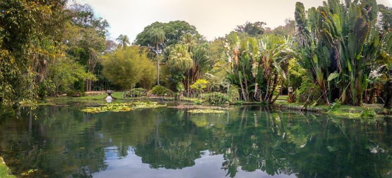 Friar Leandro Lake στο βοτανικό κήπο Jardim Botanico - Ρίο ντε Τζανέιρο, Βραζιλία στοκ φωτογραφίες