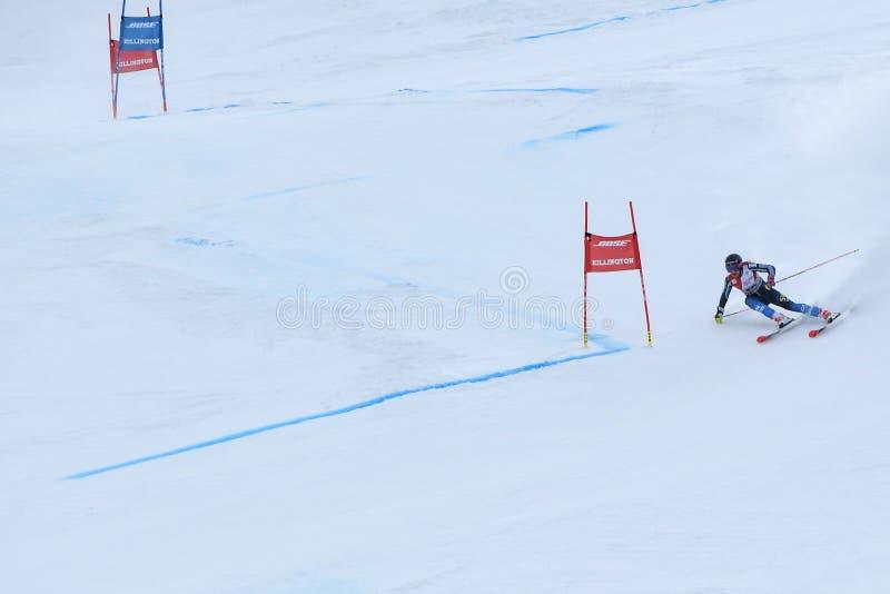 Frida Hansdotter von Schweden konkurriert im ersten Lauf des Riesenslaloms lizenzfreies stockbild