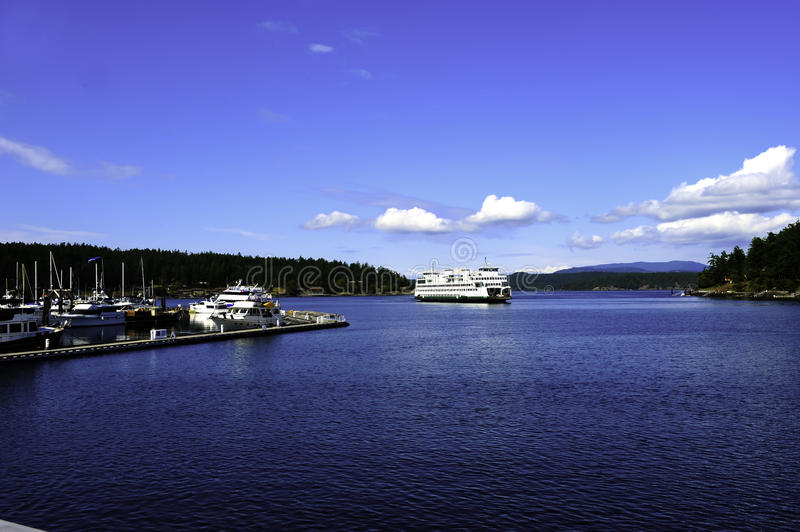 Download Friday Harbor stock image. Image of harbour, dock, forest - 20371281