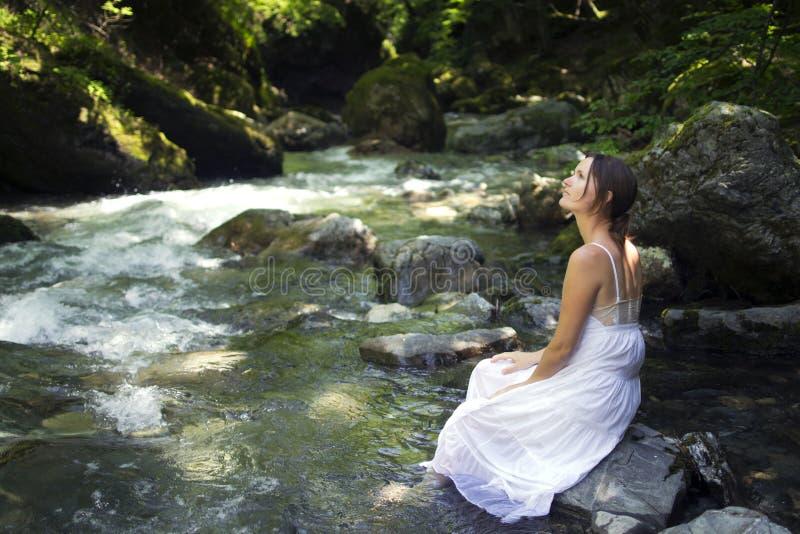 fridfull natur royaltyfri foto