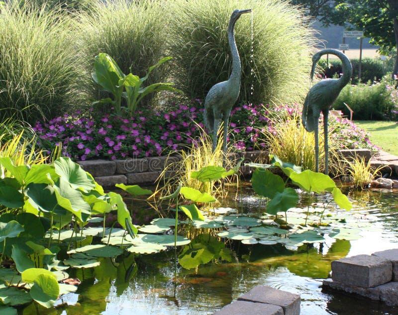 fridfullt trädgårds- damm royaltyfri foto