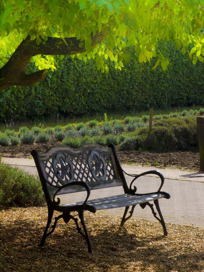 Fridsam bänk i trädgård royaltyfri foto