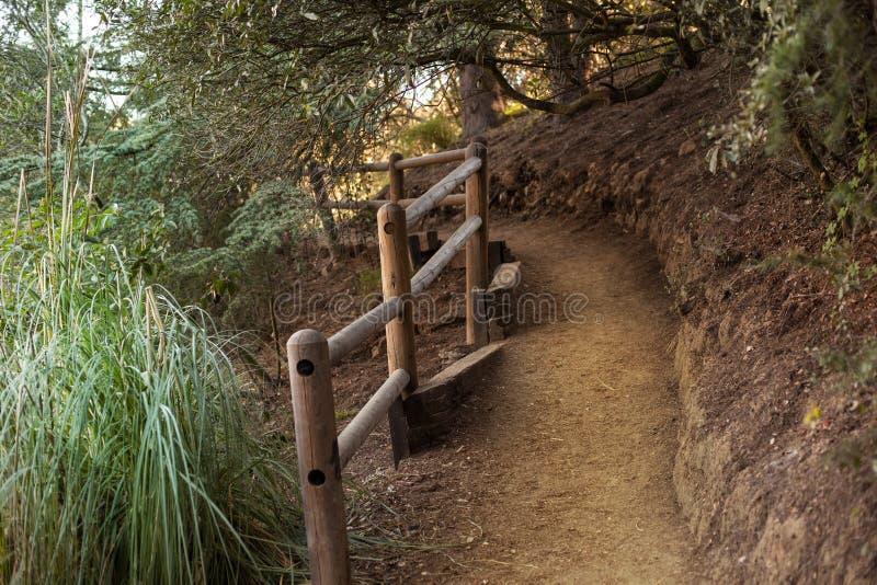 Fridsam Franklin Canyon vandring i Beverly Hills, Kalifornien Parkera består av 605 tunnländer och lokaliseras på arkivbilder