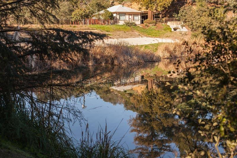 Fridsam Franklin Canyon vandring i Beverly Hills, Kalifornien Parkera består av 605 tunnländer och lokaliseras på royaltyfri foto