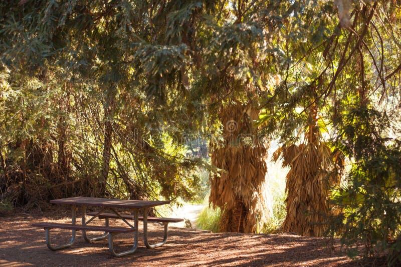 Fridsam Franklin Canyon vandring i Beverly Hills, Kalifornien Parkera består av 605 tunnländer och lokaliseras på royaltyfria foton