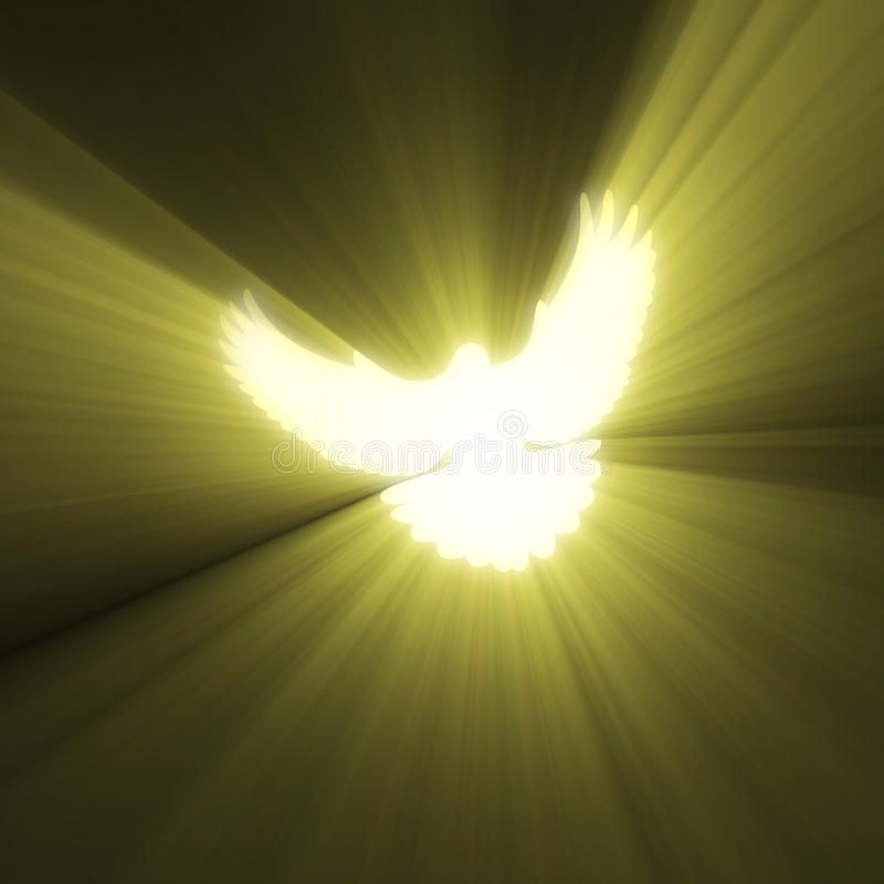Fridsam ljus signalljus för duvafågel royaltyfri illustrationer