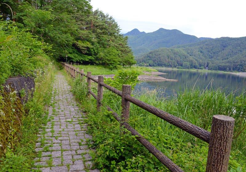 Fridsam naturplats med gröna berg, träd och sjön i Kawaguchiko nära Mount Fuji arkivfoton