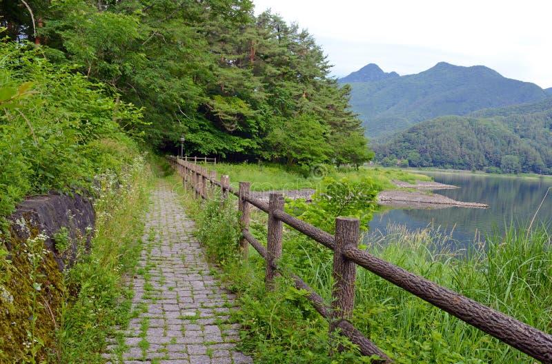Fridsam naturplats med gröna berg, träd och sjön i Kawaguchiko nära Mount Fuji fotografering för bildbyråer
