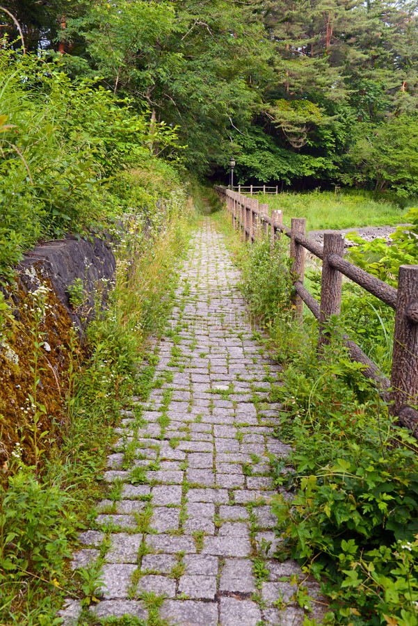 Fridsam naturplats med gröna berg, träd och sjön i Kawaguchiko nära Mount Fuji arkivbild