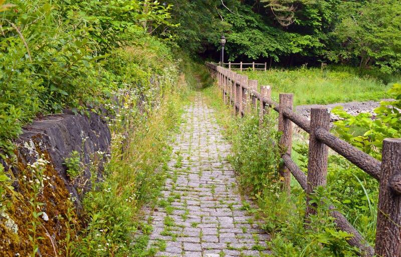 Fridsam naturplats med gröna berg, träd och sjön i Kawaguchiko nära Mount Fuji royaltyfria bilder