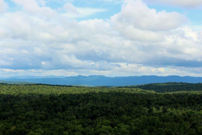 Fridsam plats med frodig gräsplan av träd på bergssidan med härlig abovee för blåa himlar royaltyfria foton