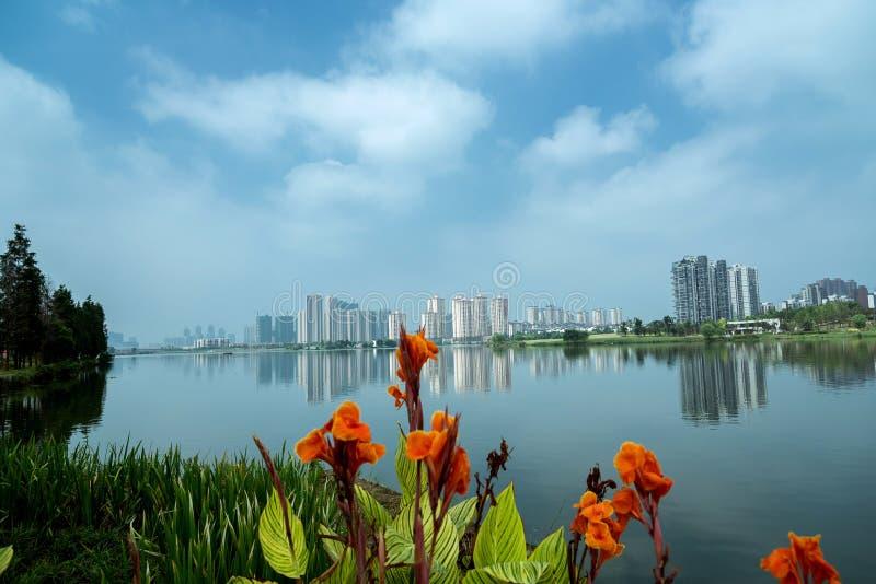 Fridsam sjö med blommor och träd arkivbilder