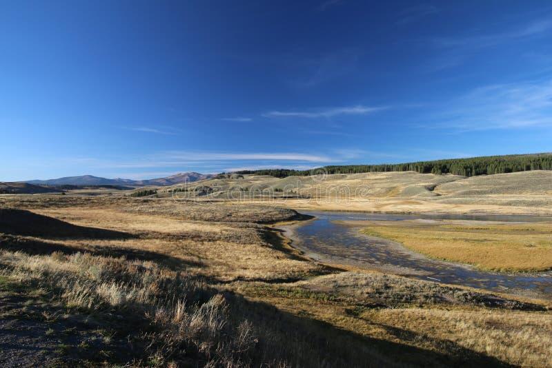 Fridsamma överflödande Hayden Valley i nedgången, en härlig äng, Yellowstone parkerar royaltyfri foto
