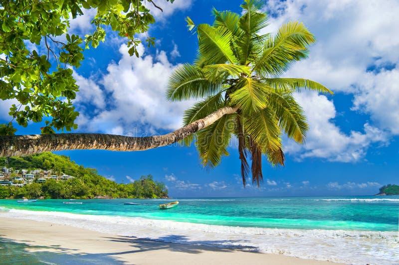 Fridsamma Seychellerna öar arkivbild