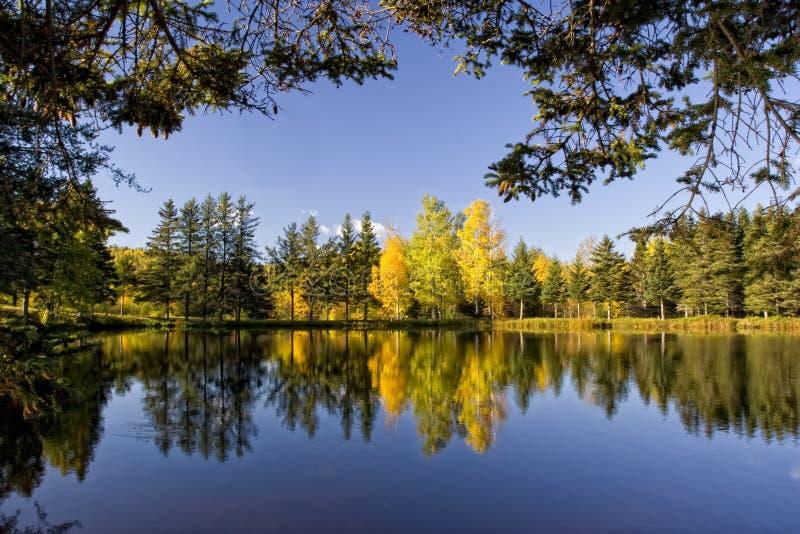 fridsamt landskap för fall royaltyfri fotografi
