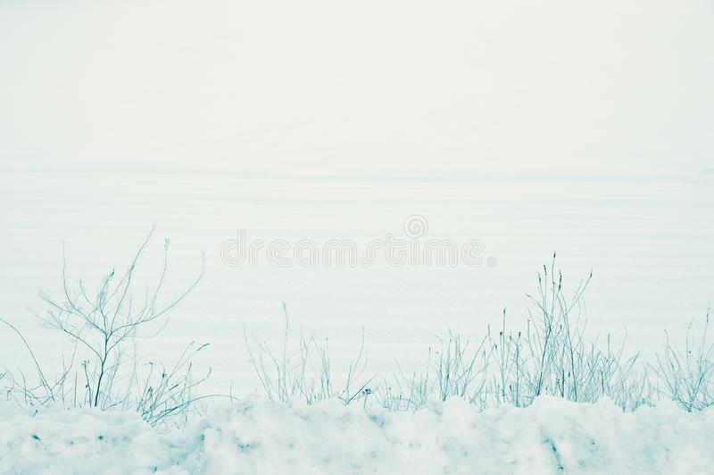 Fridsamt lantligt vinterlandskap av snö som täcker jordningen av jordbruksmark i bygden en tyst December morgon royaltyfri foto