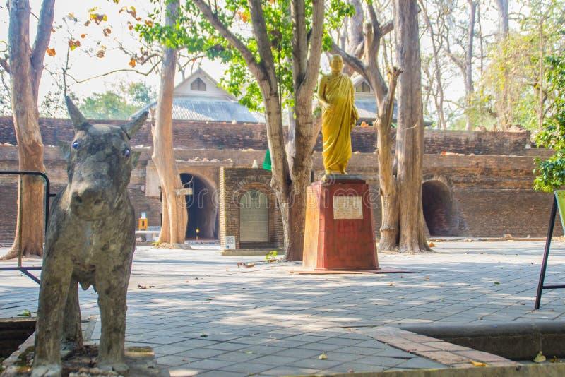 Fridsamt omge på Wat Umong Suan Puthatham, en årig buddistisk tempel 700 i Chiang Mai, Thailand Wat Umong är berömda Budd royaltyfria foton