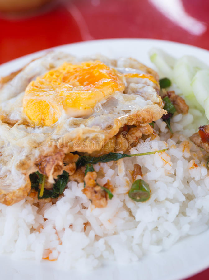 Fried basil chicken with fried egg royalty free stock photos